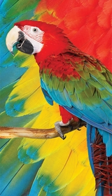 Beautiful Macaw Parrot Velour Beach Towel