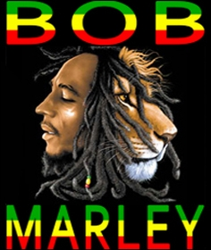 Bob Marley T-Shirts & Accessories