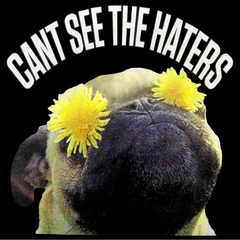 Can't See The Haters Funny Pug Mens T-shirt