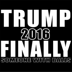 Donald Trump 2016 Finally Someone With Balls Mens T-shirt