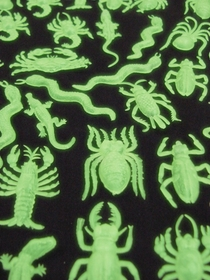 Glow In The Dark Insects (Pack Of 144)