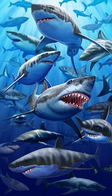 "Great White Shark Beach & Bath Towel (40"" x 70"")"