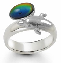 Magic Dolphin Band Mood Ring
