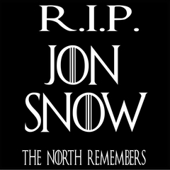 RIP Jon Snow - The North Remembers Mens T-shirt