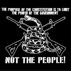 The Constitution Limits The Government Not People Mens T-shirt