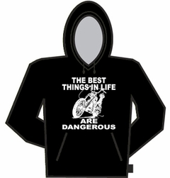 Things In Life Are Dangerous Hoodie