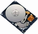 40Y9035 IBM, Internal Hard Drive, 160GB