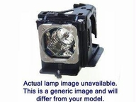 Nec Display Solutions Replacement Lamp For Np-pe401h Projector