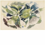 Charles Demuth <i>August Lilies, 1921</i> print