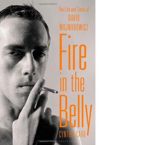 Fire in the Belly : The Life and Times of David Wojnarowicz