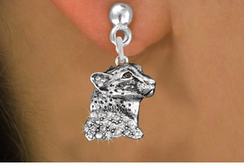 <bR>                 EXCLUSIVELY OURS!!<Br>           AN ALLAN ROBIN DESIGN!!<BR>     LEAD, NICKEL & CADMIUM FREE!! <BR>W1353SE - DETAILED CHEETAH WITH <BR>CLEAR CRYSTALS CHARM EARRINGS <BR>       FROM $4.95 TO $10.00 �2012