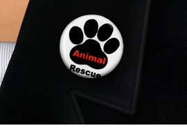 "<bR>                EXCLUSIVELY OURS!!<BR>          AN ALLAN ROBIN DESIGN!!<BR>W19335P -  ""ANIMAL RESCUE"" WITH PAW <BR>           CLEAR FINISH TACK PIN <br>      FROM $1.28 TO $3.25 �2012"