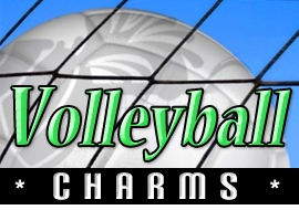 <BR>  WHOLESALE VOLLEYBALL CHARMS <BR> CADMIUM, LEAD AND NICKEL FREE <BR>             SOLD INDIVIDUALLY