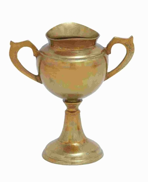 "15"" H Aluminium Trophy Vase with Stunning Muted Gold Finish Brand Woodland"