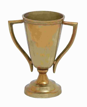 "15"" H Attractive Aluminium Trophy Vase with Matte Texture Brand Woodland"