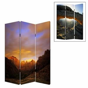 "72"" Desert 3 Panel Screen with Complementary Images on Canvas Brand Screen Gem"