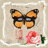 Amazing Canvas of Butterfly and Rose II by Yosemite Home Decor