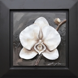 Attractive Masterpiece of White Orchid by Yosemite Home Decor