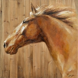 Attractive Styled Equine Profile II Classy Painting by Yosemite Home Decor