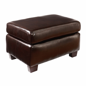 Attractive Styled Montfort Ottoman - Chocolate by Southern Enterprises