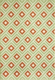 "BAJA0BAJ-7GRN-BAJA COLLECTION 1'-8"" X 3'-7"" by Momani Rugs"