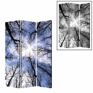 Ballet 3 Panel Screen Crafted with Complementary Images on Canvas Brand Screen Gem