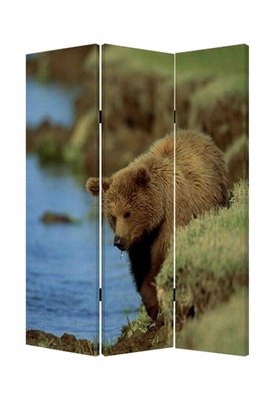 Bear Screen, 3 Panel Screen on Canvas, 48 Inch L x 72 Inch H Brand Screen Gems