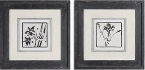 Black & White Floral Art with Black Topcoat - Set of 2 Brand Uttermost