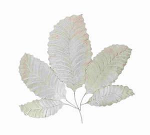 Brescia Beauteous Lovable Leaf Wall D�cor Brand Benzara