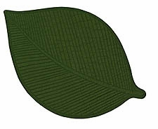 Burnt Olive Leaf Placemat, 13 Inch X 19 Inch, Olive Leaf Dining Decor Brand C&F
