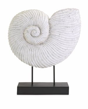 Chic Looking Ramsey Sea Shell on Stand