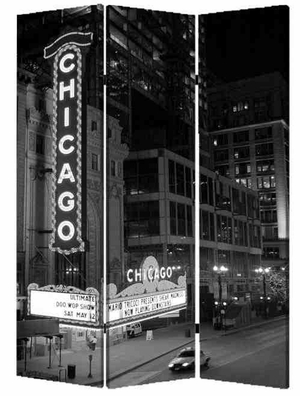Chicago Screen, 3 Panel Canvas Screen, 48 Inch L X 72 Inch H Brand Screen Gems