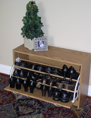 Classy Single Shoe Cabinet with Pull Down Design by 4D Concepts