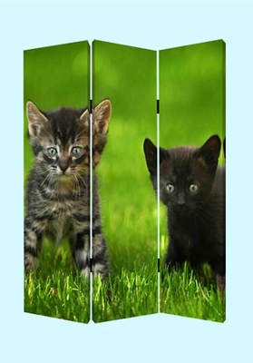 Curious Cat Screen, 3 Panel Canvas, 48 Inch L x 72 Inch H Brand Screen Gems