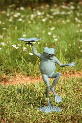 Dancing Frog Bird Feeder Amuses The Visitors Brand SPI-HOME