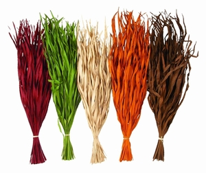 Decorative Assorted Dyed Firegrass with Elegant Design - Set of 5 Brand Woodland