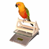 Deluxe Digital Small Animal And Aviary Scale With Perch in Plastic case, glass platform by Redmon