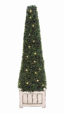 Durable Boxwood Pyramid with Lights in Sturdy Construction Brand Woodland