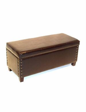 Exclusive and Trendy Virginia Storage Bench by 4D Concepts