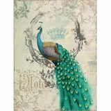 Exclusive Styled Peacock Poise II Painting by Yosemite Home Decor
