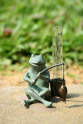 Frog Fisherman Rain Gauge A Meaningful Garden Decor Brand SPI-HOME