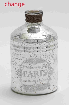 "Glass and Metal 11"" Bottle with Striking Design for Modern Decor Brand Woodland"