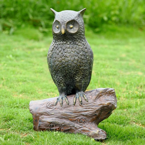 with the hooting of the owl essay The owl papers by jonathan maslow answering the nocturnal hooting of an unseen le another chapter in the owl papers describes owling in.