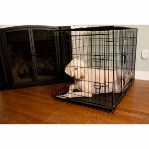 Iconic Pet - 24 Inch Foldable Double Door Pet Dog Cat Training Crate with Divider