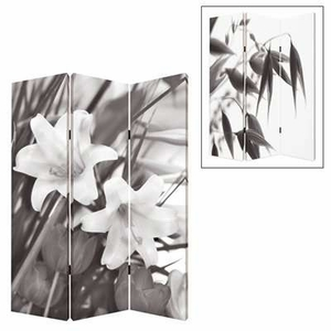 Lilly 3 Panel Screen with Complementary Images on Canvas Brand Screen Gem