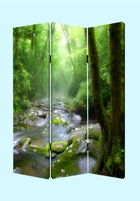 Meadows Streams Screen, 3 Panel Canvas 48 Inch L X 72 Inch H Brand Screen Gems