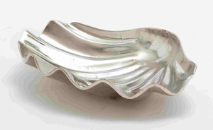 Ostrava Outstanding Decorative Sea Shell Dish Brand Benzara