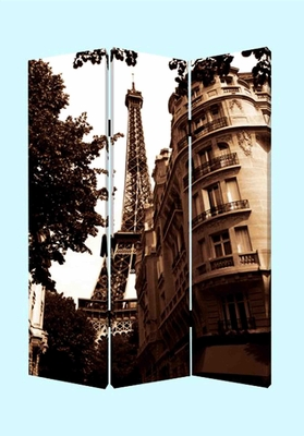 Paris Screen, 3 Panel Screen, Canvas, 48 Inch L X 72 Inch H Brand Screen Gems