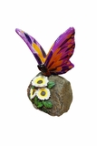 Purple Butterfly on Rock with White Flowers by Alpine Corp