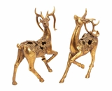 Santa's Golden Reindeer Set of 2 Holiday Decor